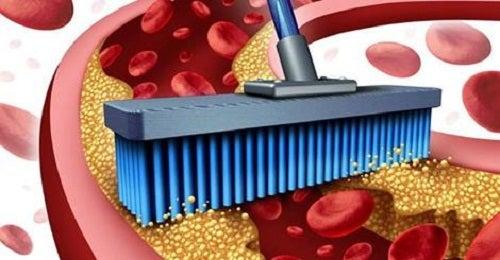 Limpiar las arterias