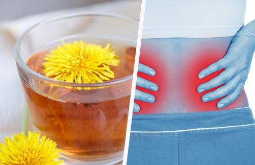 5 modos sencillos de limpiar tus riñones
