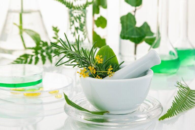 3 remedios con hierbas para combatir la pérdida de cabello