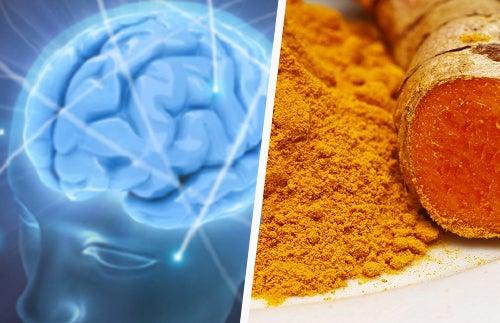 Remedio con cúrcuma para una óptima salud cerebral