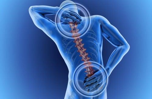 Los dolores en la parte izquierda de la columna vertebral sobre los riñones