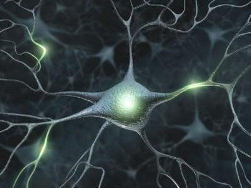 10 estrategias sencillas para mejorar tu memoria