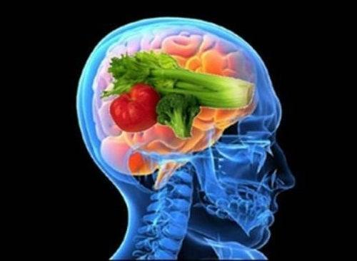 """Descubriendo los beneficios de """"la dieta del cerebro"""""""