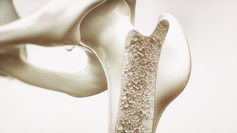 Saúde dos ossos
