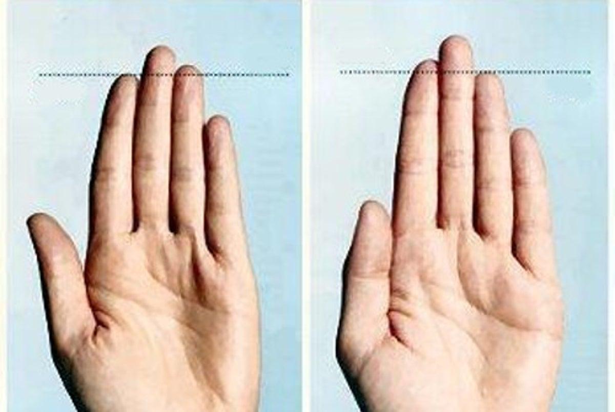 cual es el dedo indice y corazon