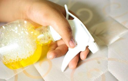 Descubre Como Limpiar Y Desinfectar Tu Colchon Cuida De Tu Salud