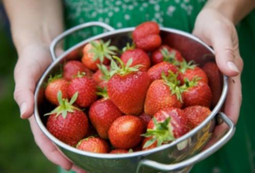 panqué fresas con nueces