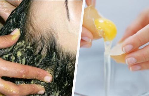 yema de huevo para el pelo seco