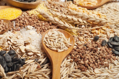 cereales integrales y energia