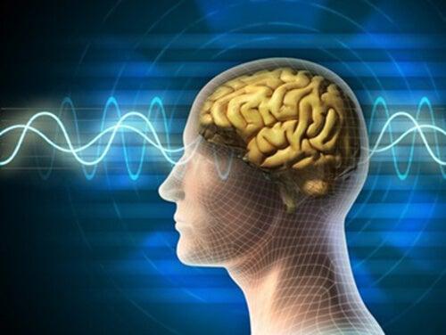 Decálogo para mantener un cerebro joven y en forma