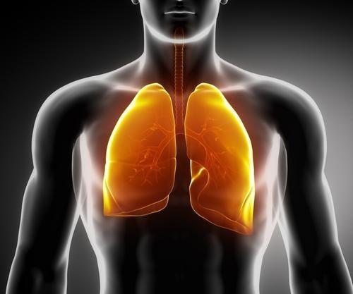 Pulmones siempre congestionados