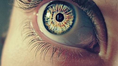 7 datos curiosos sobre nuestras pupilas