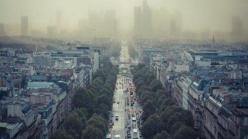 La relación entre contaminación y ansiedad: ¡Muy importante!
