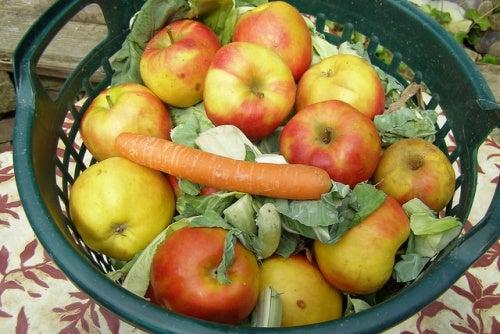 zanahoria col manzana Erich Ferdinand