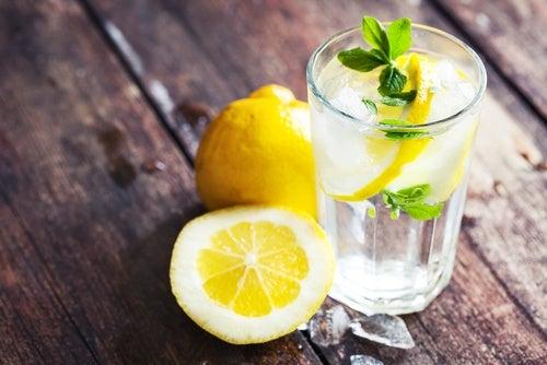 Caracteristicas-de-limon