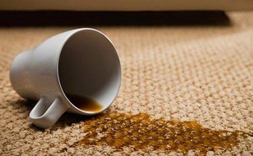 Trucos caseros para limpiar las alfombras mejor con salud - Como limpiar las alfombras en casa ...