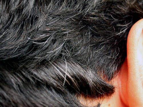 5 remedios caseros para combatir la aparición temprana de canas
