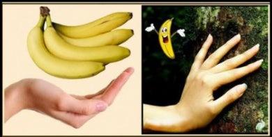 Parecido entre plátanos y mano