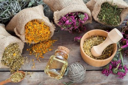 Las hierbas aromáticas permiten tener más ácido hialurónico en nuestra dermis