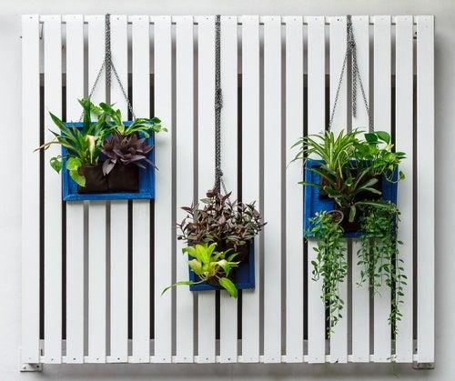 Jardín.vertical