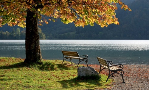 Aprende a meditar brevemente para quitar las tensiones - Un lugar para meditar ...