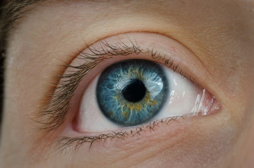Mejora-la-salud-visual