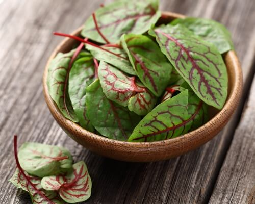 Consumo de hojas de remolacha.
