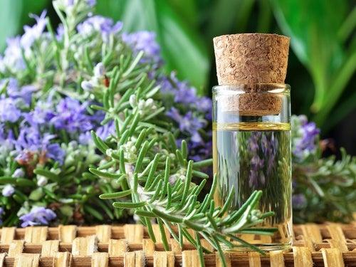 remedios herbales de circulación
