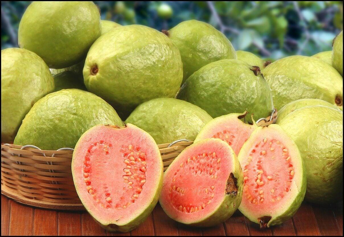 Fruta exótica guayaba.