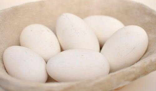 Tipos de huevo: de oca