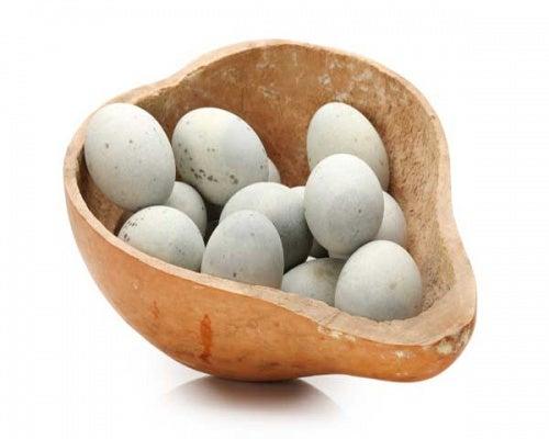 Tipos de huevos: de pato