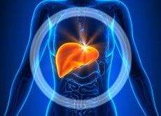 limpiar-el hígado-y-bajar-de-peso