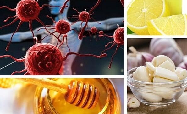 Cómo fortalecer el sistema inmunitario con suplementos naturales