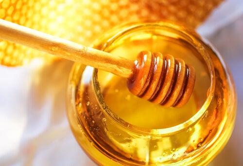 Miel de abeja para subir las defensas
