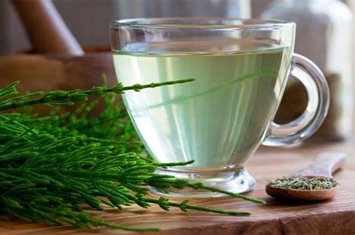 Los 8 diuréticos naturales que te ayudarán a combatir la retención de líquidos