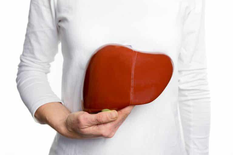 6 tratamientos medicinales para curar el hígado graso naturalmente
