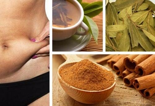 Remedio natural para quemar grasa y deshinchar el abdomen
