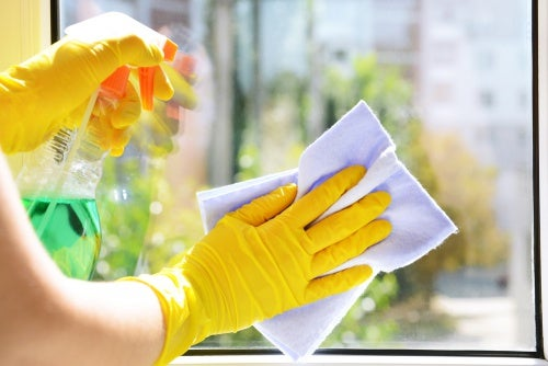 Descubre 5 limpiavidrios caseros, naturales y ecológicos
