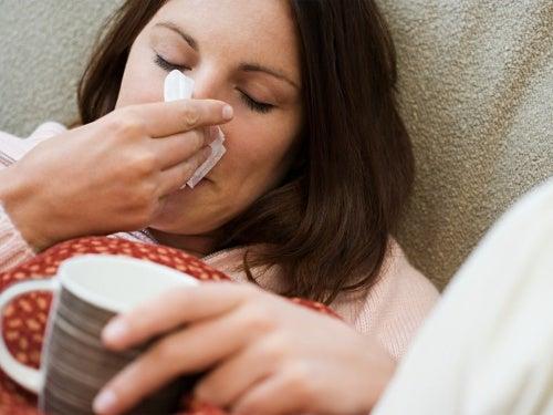 Cómo hacer una preparación medicinal de anís para tratar los resfriados