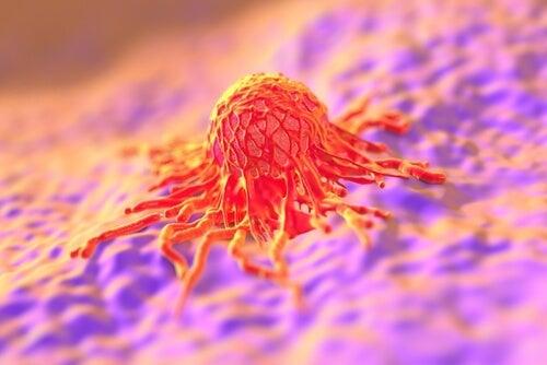El virus del papiloma y el cáncer de cuello uterino
