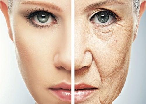 Resultado de imagen de envejecimiento