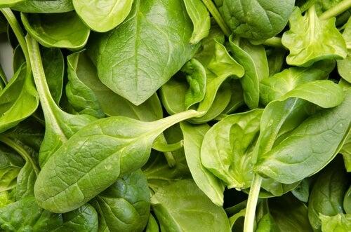 Base para batidos hechos con vegetales: espinacas.