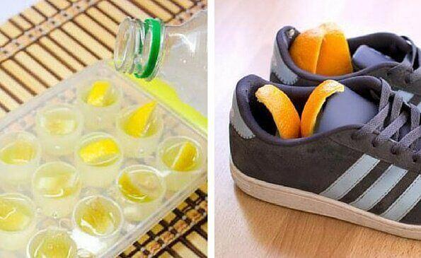 6 usos alternativos para la cáscara de los cítricos
