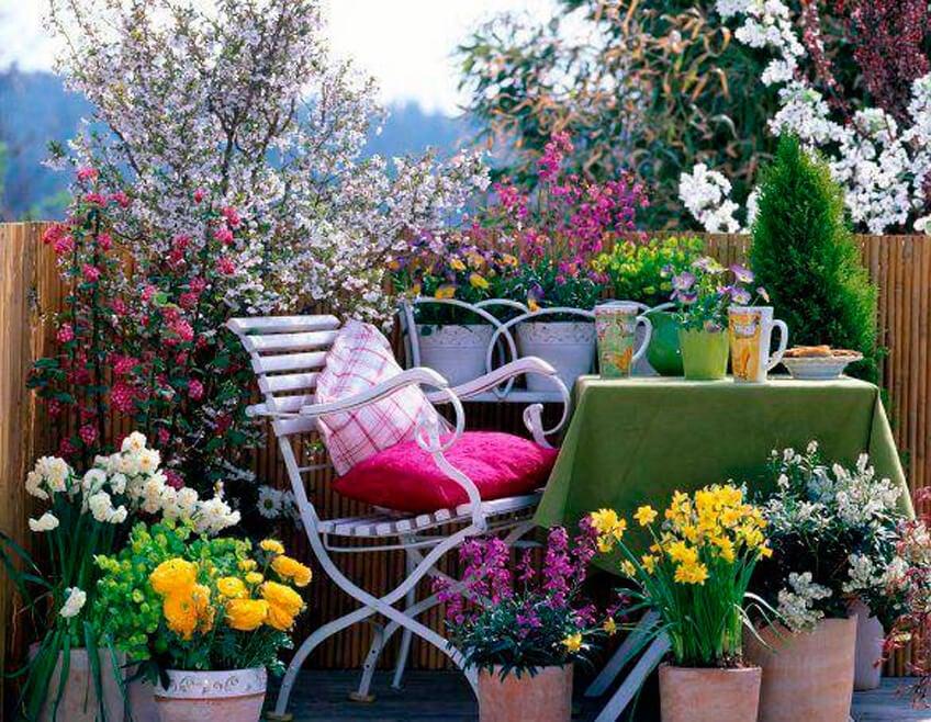 Cómo preparar pesticidas, abonos e insecticidas ecológicos