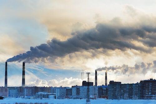 Protegete de la contaminación con un jugo desintoxicante