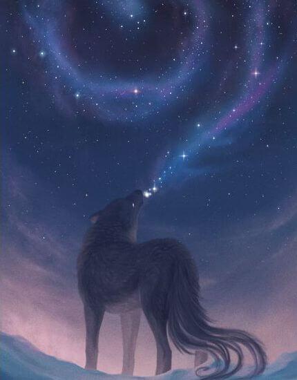 belleza lobo