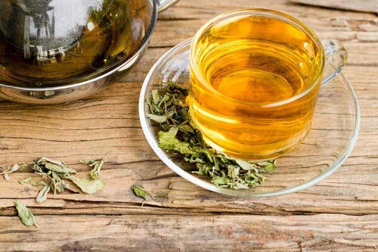 El consumo de té verde y té negro reduce el riesgo de accidente cerebrovascular