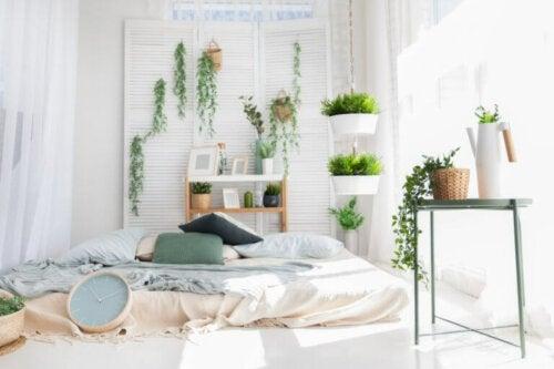 ¿Es bueno dormir con plantas en la habitación?