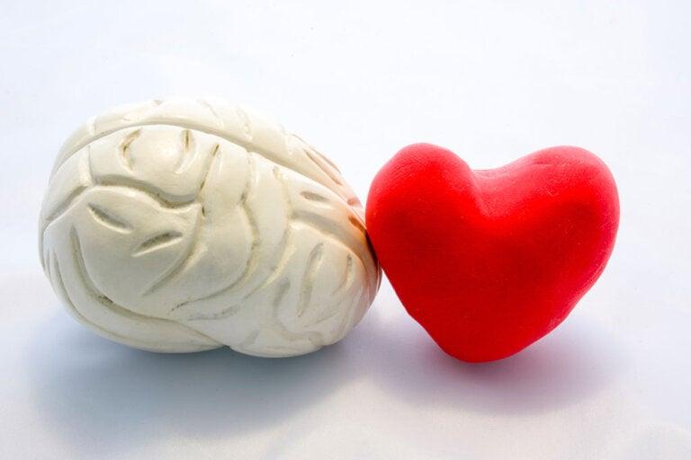 ¿Cómo influye el amor en el cerebro?