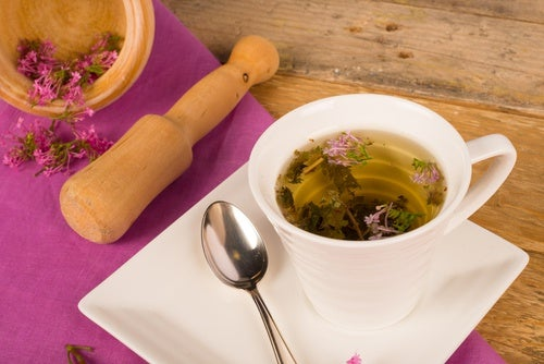 Las plantas medicinales más efectivas para tratar los síntomas de la menopausia